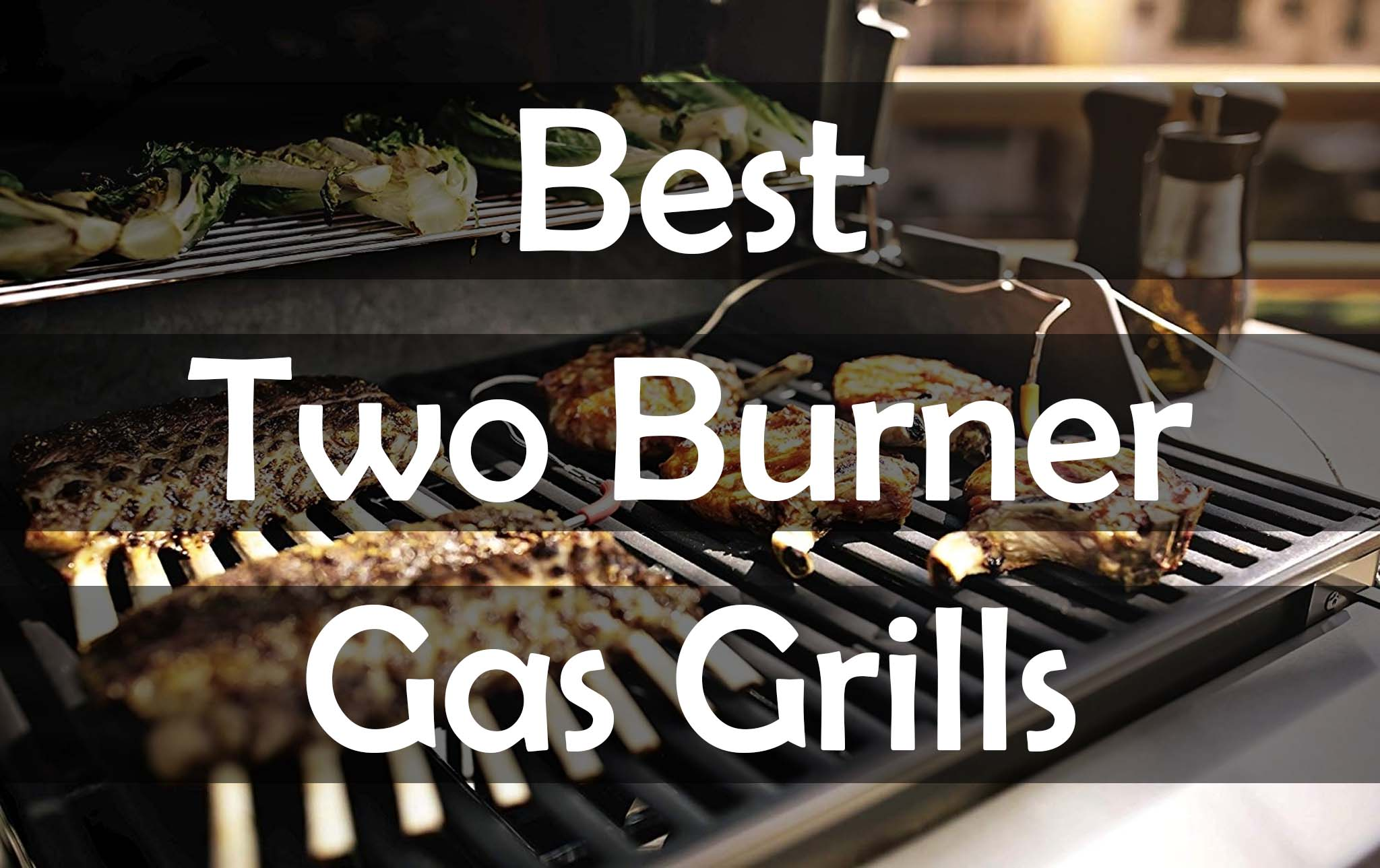 Top Rated The Best 2 Burner Gas Grills