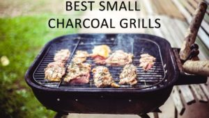 Top Rated Best Small Charcoal Grills in 2020 - Buyer's Guide & Reviews