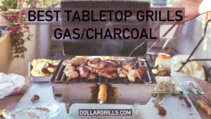 10 Best Tabletop Gas/Charcoal Grills - Ultimate Guide